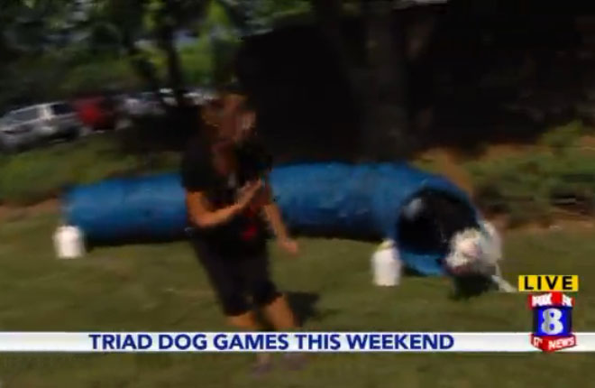 Fox 8 @ 4 p.m. – Live with Triad Dog Games Demo