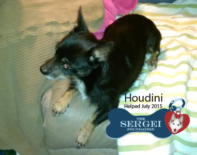 Houdini – Helped July 2015