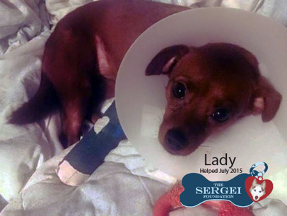 Lady Sarah Jane – Helped Aug. 2015