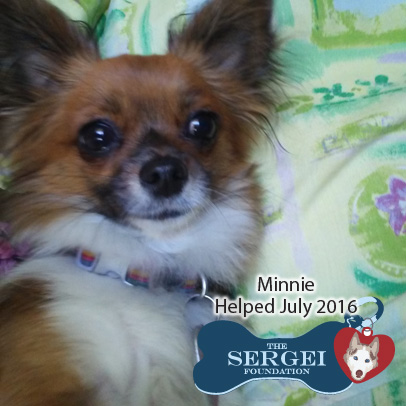 Minnie – Helped July 2016
