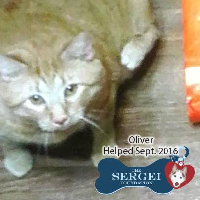 Oliver – Helped Sept. 2016