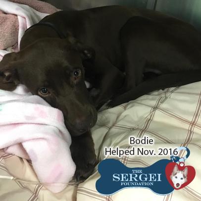 Bodie – Helped Nov. 2016