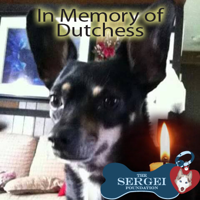 Dutchess – Helped April 2017