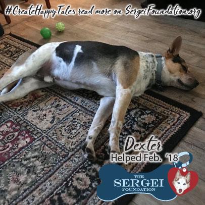 Dexter – Helped Feb. 2018