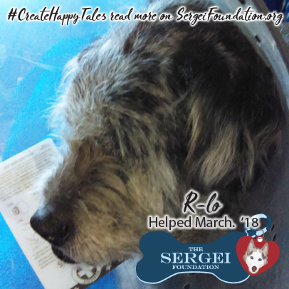 Rlo – Helped March 2018