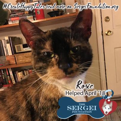 Rosie – Helped April 2018