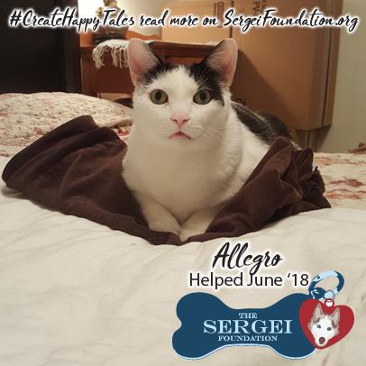 Allegro – Helped June 2018