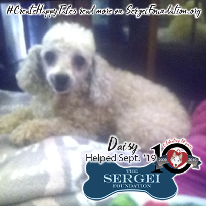 Daisy – Helped Sept. 2019