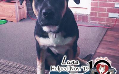Luna – Helped Nov. 2019