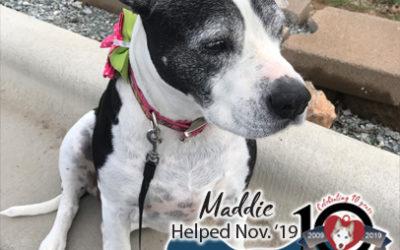Maddie – Helped Nov. 2019