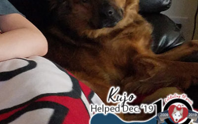 Kujo – Helped Dec. 2019